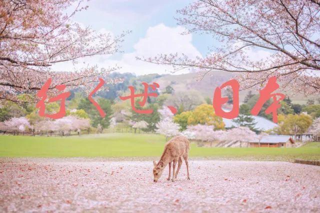 u=1102562966,1121772075&fm=173&app=25&f=JPEG.jpg