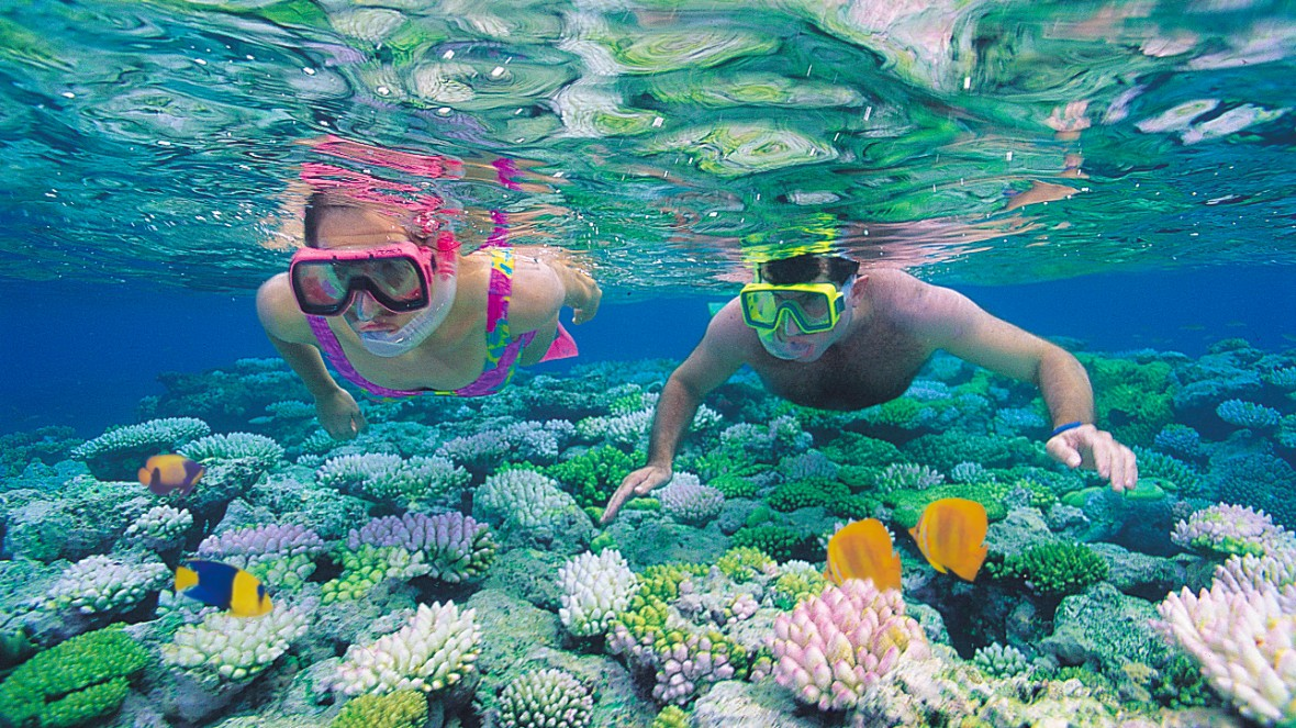Snorkeling-and-swimming-1180x663.jpg